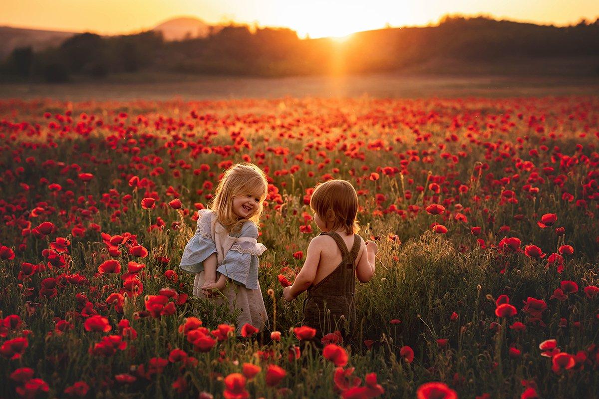 dreamwolrdphotohu-naplemente-aranyora-gyerekfotozas